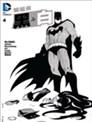 蝙蝠侠之黑与白