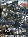 Batman Unhinged