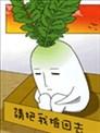 绿头萝卜成了精